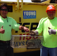 Young Brothers, Ltd., staff at Nawiliwili Harbor, Kauai