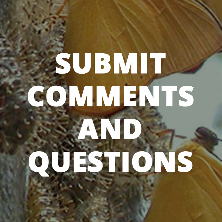 Link to submit comments and questions page