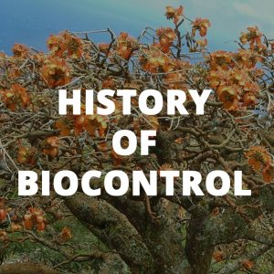 Button link to learn about the history of biocontrol