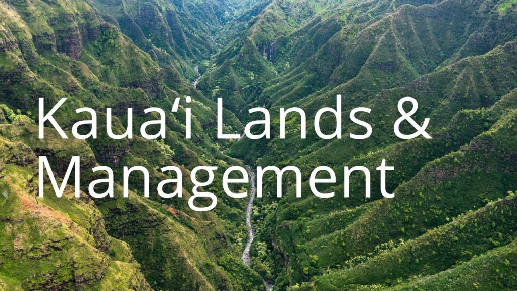 An image of a forested valley linking to Kauaʻi Lands & Management