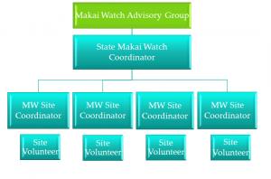 MW Governance