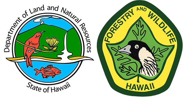 Division of Forestry and Wildlife: Outdoor Recreation logo