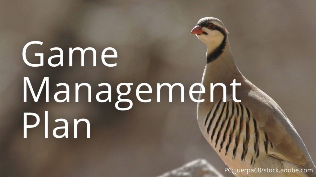 An image of a chukar partridge linking to Game Management Plan