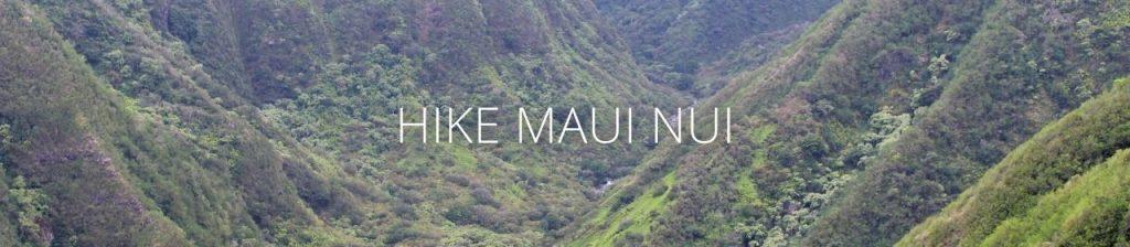 An image of Waiheʻe Valley with the words Hike Maui Nui