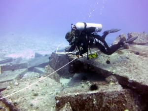 scuba diver monitoring for sick urchins