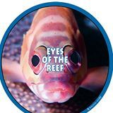 logo for Eyes of the Reef Network