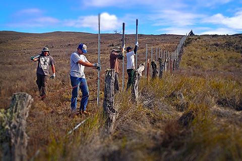 image of a group of people building a fence