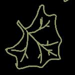 aweoweo leaf