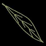 naio leaf