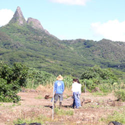 The site visit is one of the first and most important parts of conservation planning.