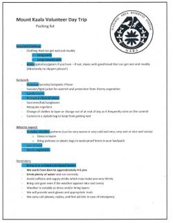 Volunteer Checklist Example
