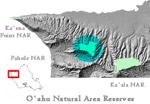 NARS Map