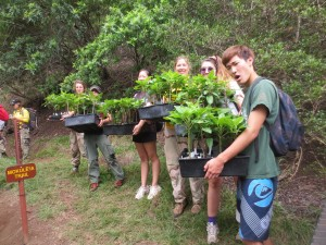 Students with Out-plants