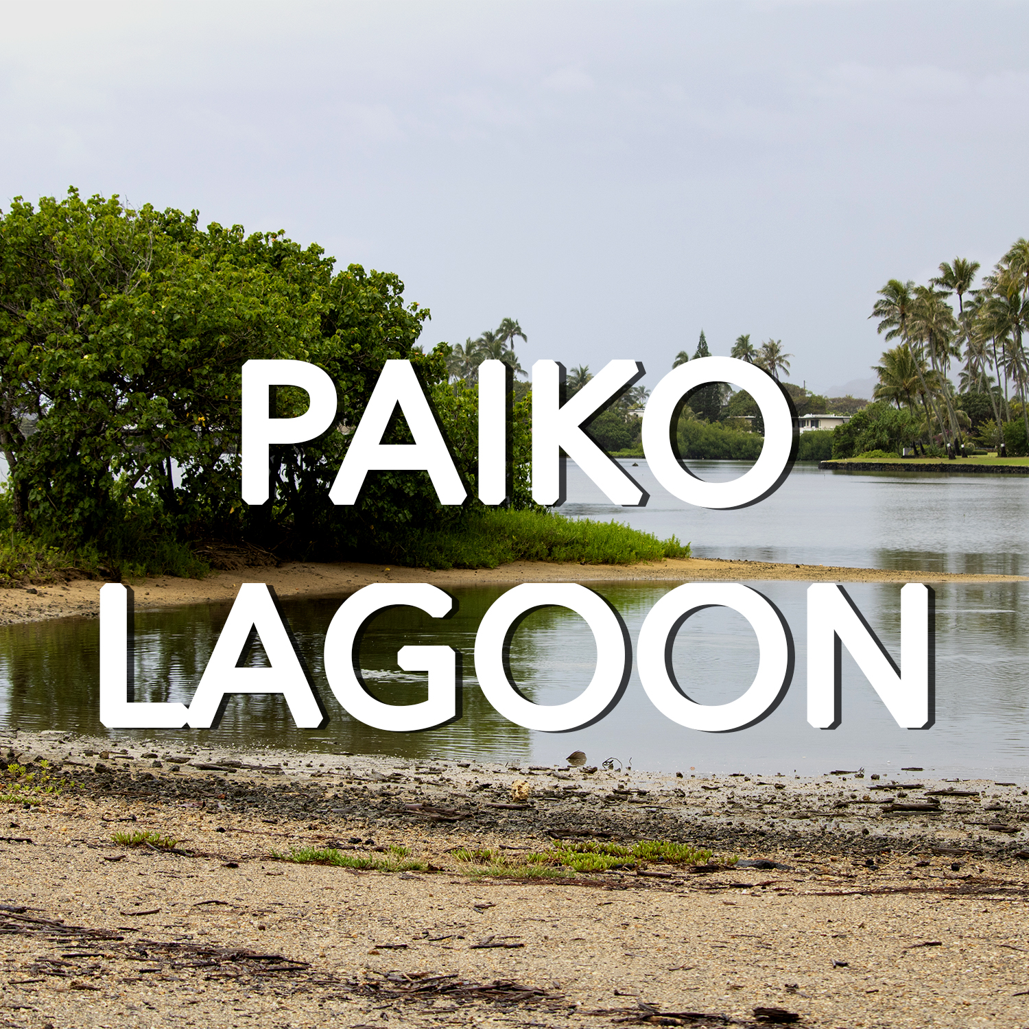 Button to learn more about Paiko Lagoon