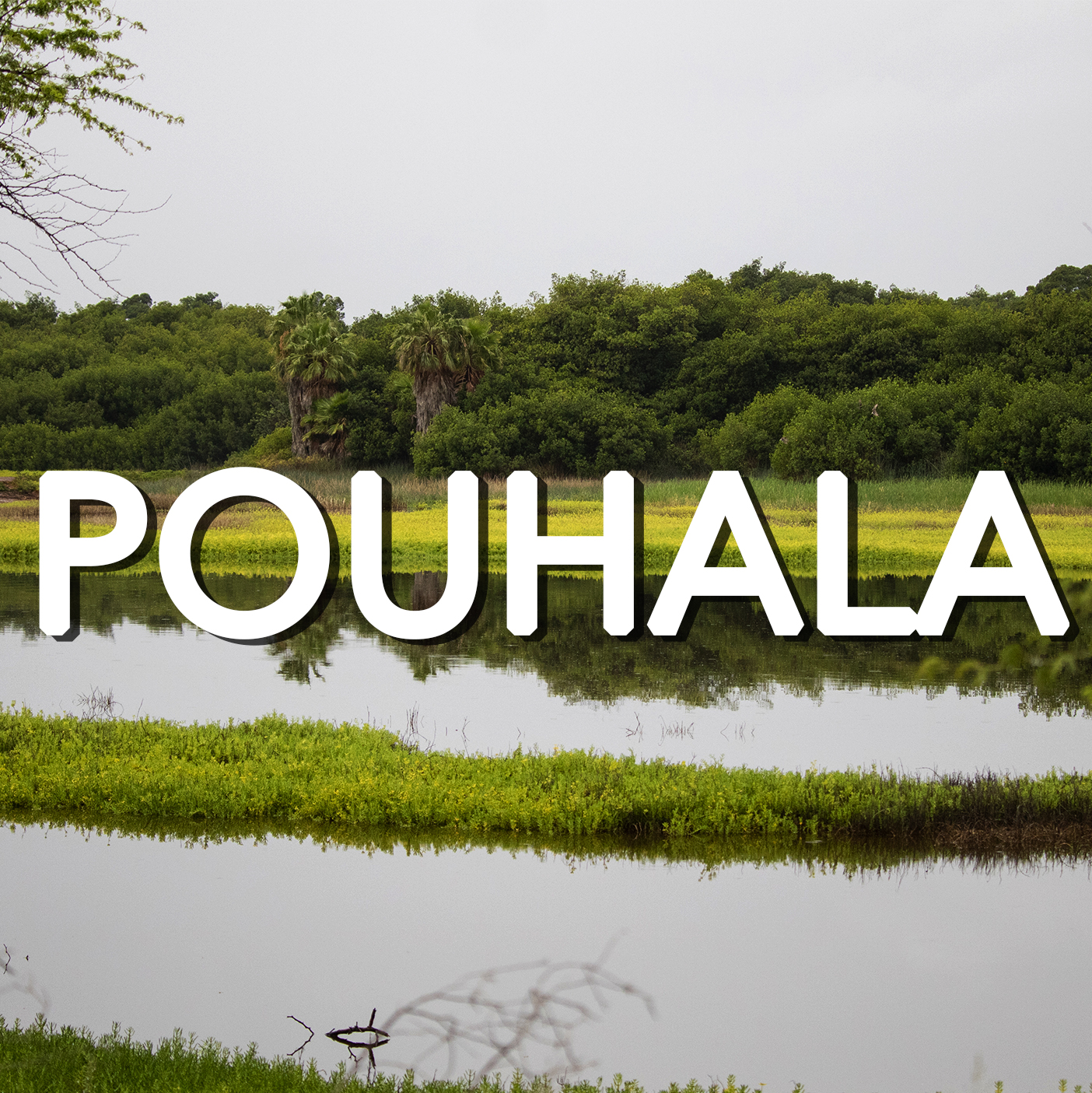 Button to learn more about Pouhala