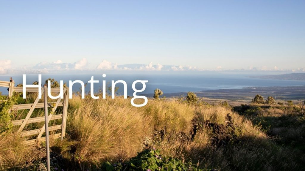 An image of a Hawaiʻi Island landscape linking to a page on Hunting