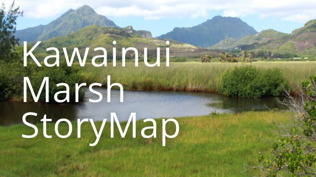 An image of Kawainui Marsh linking to a StoryMap