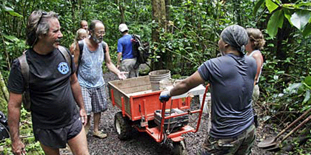 Volunteers needed for public survey on Manoa Falls Trail