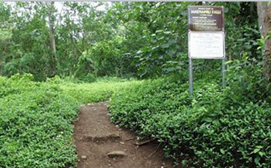image of a hiking trail head entrance