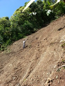 Aaron Lowe, Na Ala Hele Trail and Access Specialist, inspects large section of the Aihualama Trail  removed by landslide