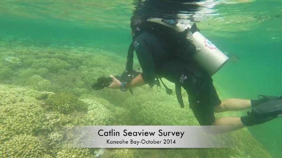 Catlin Seaview Survey