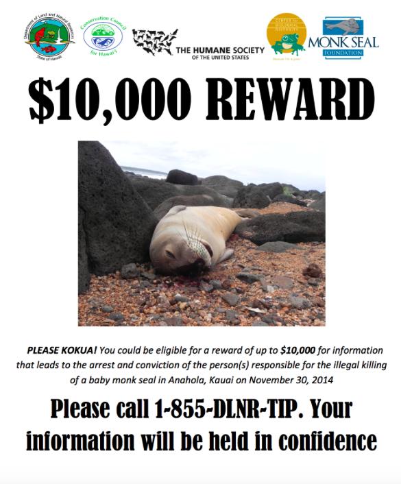 TIP-Reward