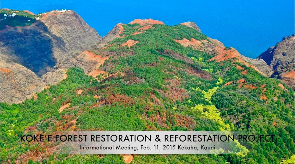 Kokea-Restoration-Update