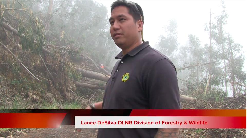 Kula Forest Reserve Reopen Lance DeSilva