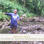 Skippy Hau - DAR Biologist
