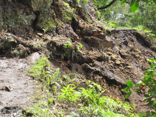 Aiea-Trail-Loop-Rockfall