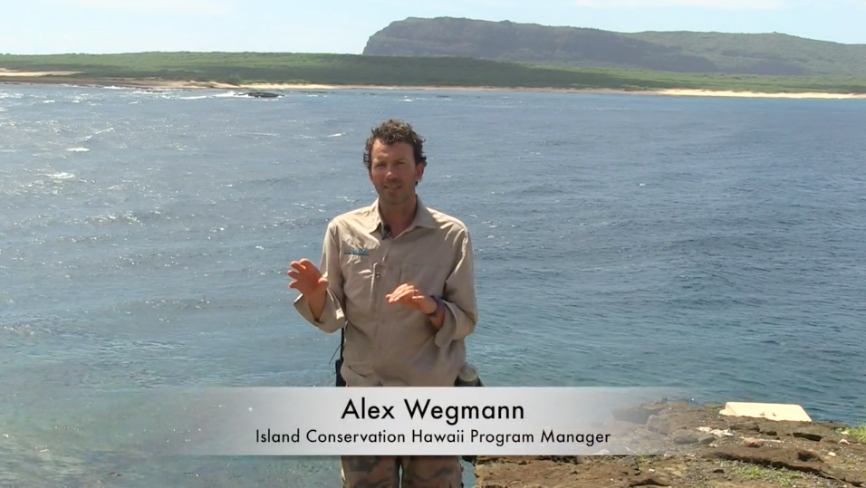 Kauai-Island-Conservation-Manager-Lehua-Alex-Wegmann