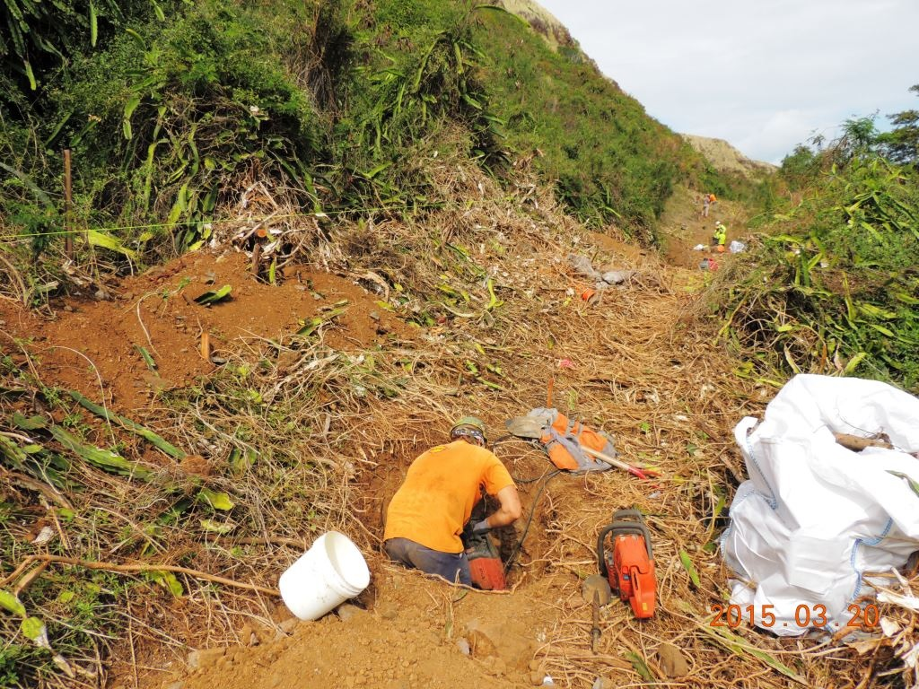 Lanikai fence line cleared