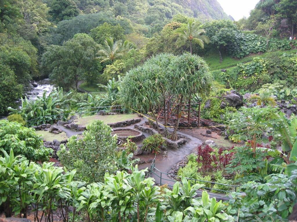 ioa garden