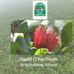 DLNR & YOU - Rapid Ohia Death
