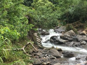 Iao Valley Monument Closed