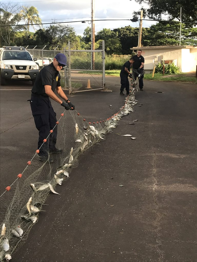 DOCARE OFFICERS BUST REPEAT OFFENDER FOR LAY NET VIOLATION