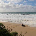 off-shore moorings on Maui