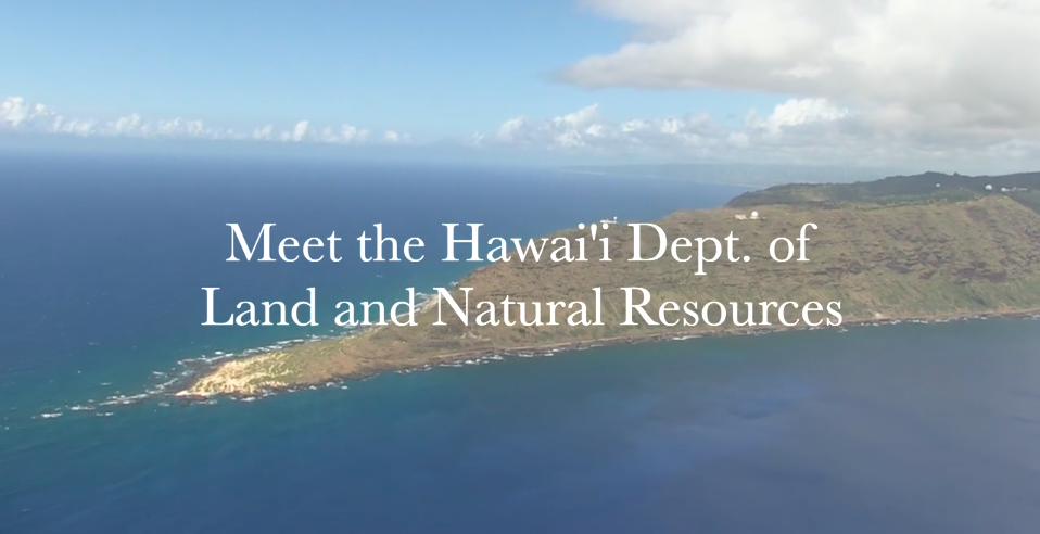 Meet the Hawaii Dept. of Land and Natural Resource